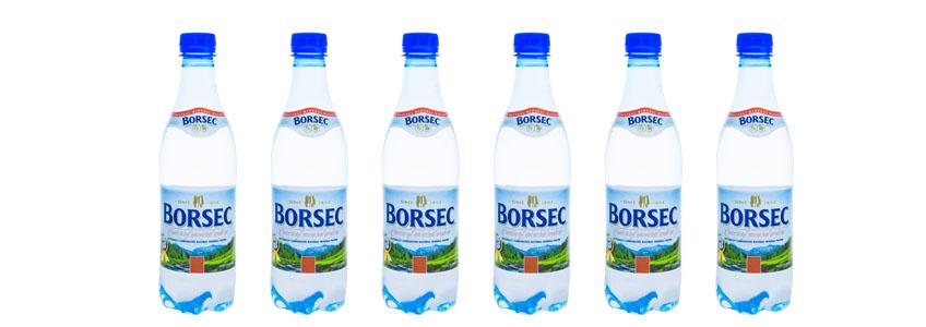 Borsec天然汽泡礦泉水|寶賽客氣泡礦泉水|喝好水補充鈣鎂離子|礦泉水推薦